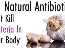 Natural Antibiotics That Kill Bacteria