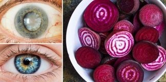 Mixture Improves Vision and Liver Detoxification
