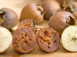 Medlar - Maybe The Best Fruit You've Never Heard Of