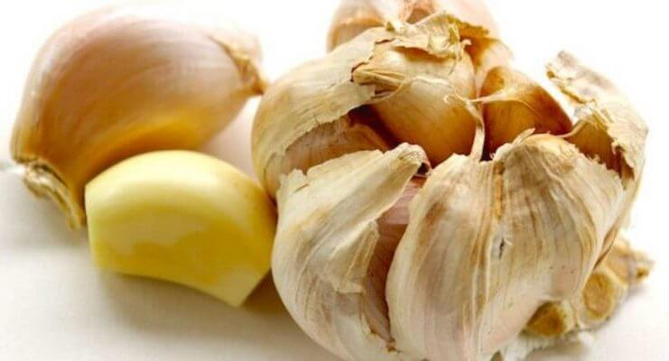 Garlic Can Kill 14 Different Infections